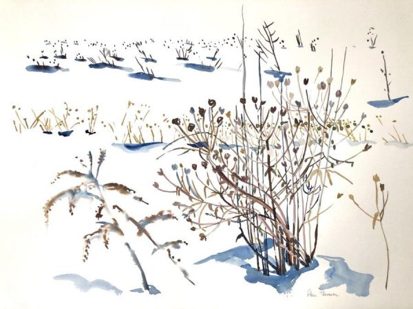 Thesmar_Fleur_Winter_Seeds_3_26x34_watercolor