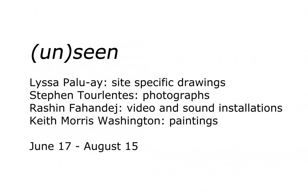 (un)seen: ZOOM Artist Panel