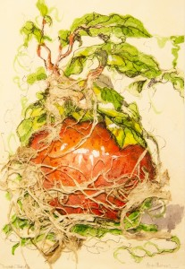 ANNE BRIGGS, Tomato Patch, mixed media; 6.5 x 4.5 inches, $300