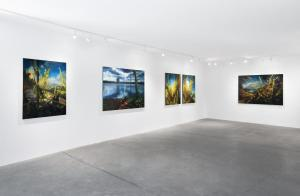 Installation View, The Sixth Season,  Abigail Ogilvy Gallery, Fall 2020 Photo: Julia Featheringill Photography, Contact: Abigail Ogilvy Gallery